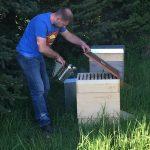 Andreas am Bienenstand