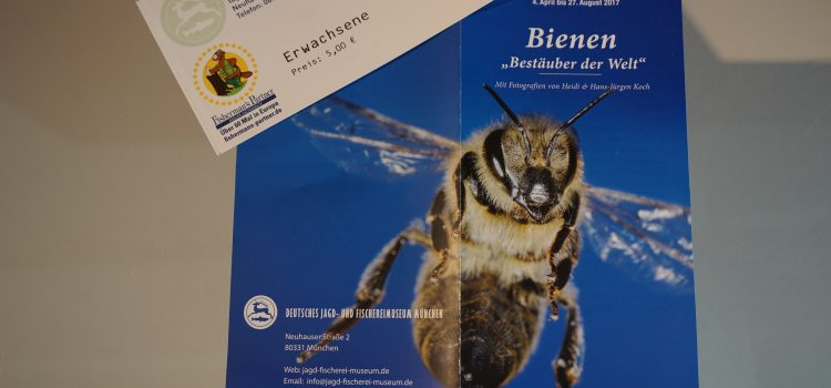 Ausstellung im Jagd- und Fischereimuseum: Bienen – Bestäuber der Welt
