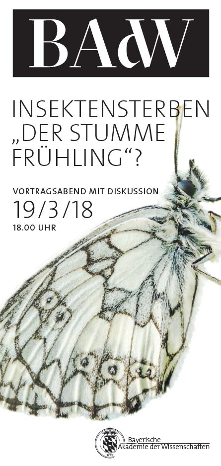 "Insektenrückgang - Insektensterben ""stummer Frühling"""